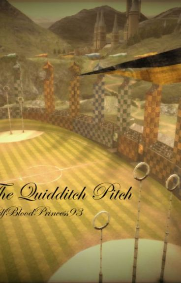 The Quidditch Pitch - Oliver Wood Love Story