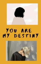 You Are My Destiny [COMPLETE]  by Carramel___