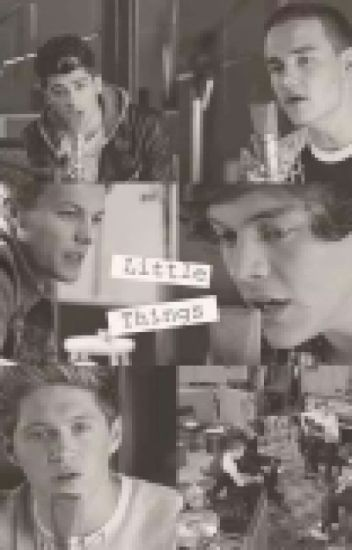 Little Things (A Niall Horan fan fiction)