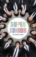 My Super Girl (Super Junior FANFIC) by YassidiieSam