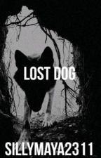 Lost Dog by Sillymaya2311