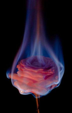 Dark Blaze by Black_Swan_Song