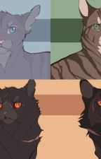 Warrior cats x reader by blueflamedokumura