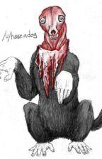 Creepypasta x reader by blueflamedokumura