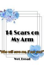14 Scars on My Arm/Skeppy x Badboyhalo/Skephalo by WetBread_