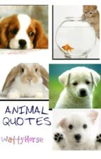 Animal Quotes by WattyHorse