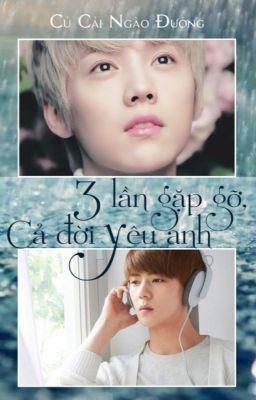 Đọc truyện 3 lần gặp gỡ cả đời yêu anh - Hunhan