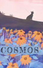 COSMOS by eykim28