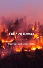 Chile en llamas by FLMujica