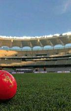 Cricket Prefences 2019  by cordeliacsauer