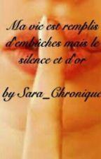 Ma vie est remplie d'embûches mais le silence est d'or [ EN PAUSE ] by Sara_chroniques