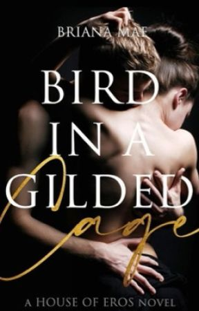 Bird in a Gilded Cage by houseofmirrors
