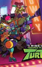RotTMNT X Reader Stories by KelBlue19