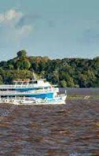 O Passageiro do Barco by ValmirdaSilva7