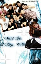 Maid For 12 Boys, EXO by Mika-Kpop