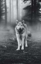 Alpha, Alpha, Luna by Lynnbug77077