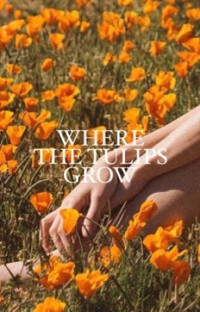 where the tulips grow, 𝐊𝐘𝐋𝐎 𝐑𝐄𝐍 by kinkykenobi