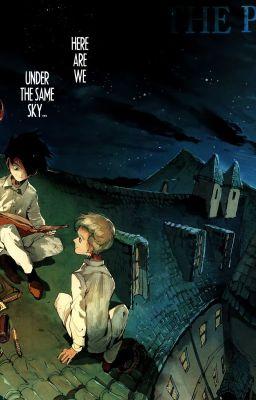 Đọc truyện [ The Promised Neverland ] | Norman  Ray + TPN | Trắng và Đen