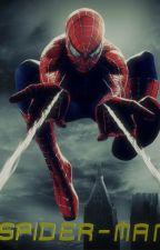 The New Amazing Spider-Man by Kapiushon01