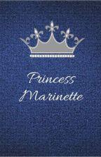 Princess Marinette by shipsssssss