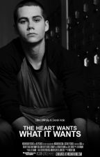 The Heart Wants What It Wants // {STEREK} (Romance Gay) by Insaneboy32