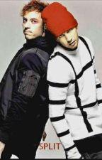 Split (Tyler Joseph x Reader x Josh Dun) by QueenOfThe21Neds