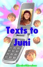 Texts To Juni by elizabethbooben