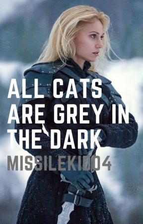All cats are grey in the dark by missilekid04