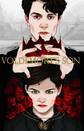 Voldemort's Son by BrianFretwell