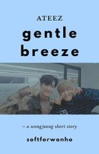 gentle breeze - ateez seongjoong by softforwonho