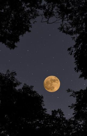 the moon fell out of the sky: a poem by Prooffreader