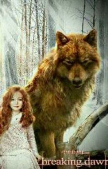 Breaking Dawn Continues (The Twilight Saga Fan-fic