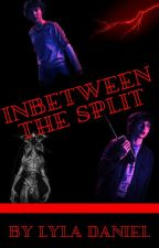 Inbetween the Split (Mileven) by ldbean