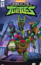 rotTMNT x reader by catlyion