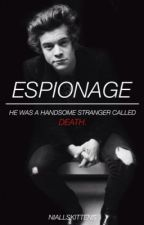 Espionage [H.S] by niallskittens