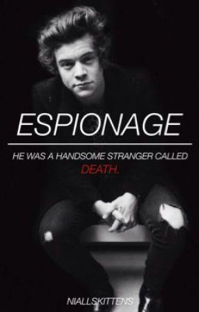 Espionage [H.S] by niallskittens
