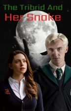The Tribrid and Her Snake (Draco Malfoy) by xTribridx
