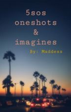 5sos Oneshots and Imagines  by maddezz