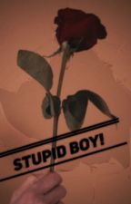 Stupid Boy! [old magcon] by likeiwouuld