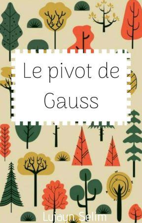 Le pivot de Gauss by LujaynSelim