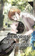 Memories In Zambales by WinterSab