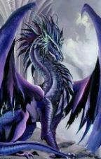 Dragons RP (The life of a dragon) by Nina-Night