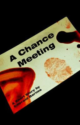 A Chance Meeting