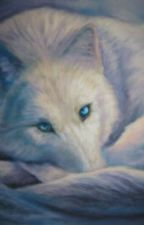 Blue Moon by aniraz_914