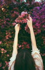 Růže Života by FlaStehlk