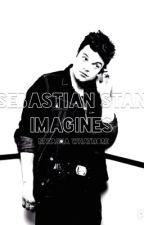 Sebastian Stan x Reader Imagines by Haunted_Toaster