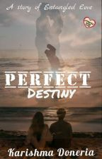 Perfect Destiny  by mebooklover25