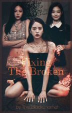 Fixing the broken (Kim Jisoo) (Jisoo x Jennie's twin) by The_black_hornet