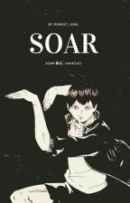 Soar 翔る | HAIKYUU by lcarr11540