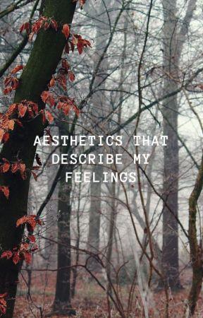aesthetics that describe my feelings by rainia154